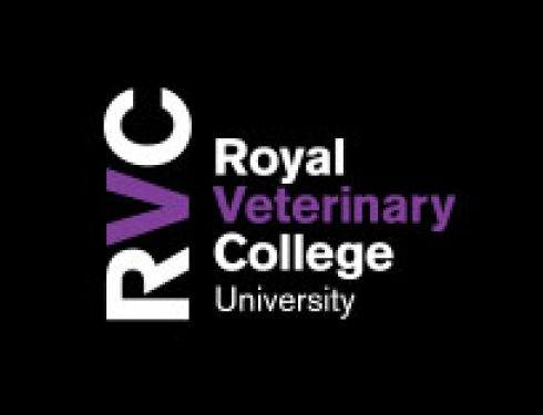 RVC Dog Fest Stand
